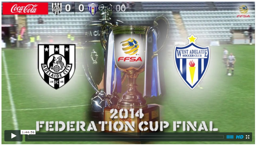 2014 Federation Cup Final
