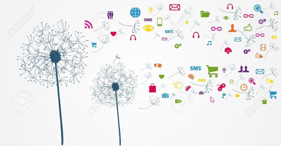 socialmediaflower
