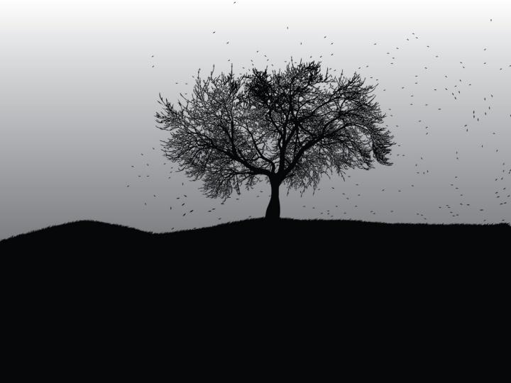 black-autumn1-1280x960-desktopia-net